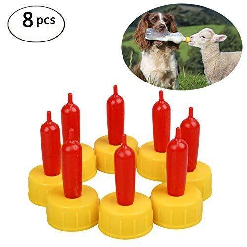 Bestselling Horse Feeding & Watering Equipment