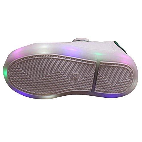 Highdas Niños Muchachos Muchachos LED Zapatos Colorido Luz Up Sneaker Trainers crocodile-verde