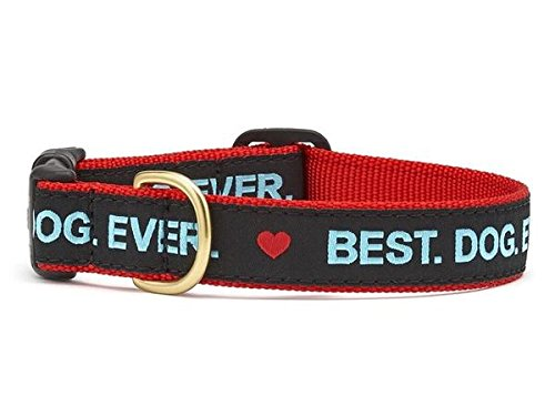 Up Country Best Dog Ever Collar L (The Best Dog Ever)