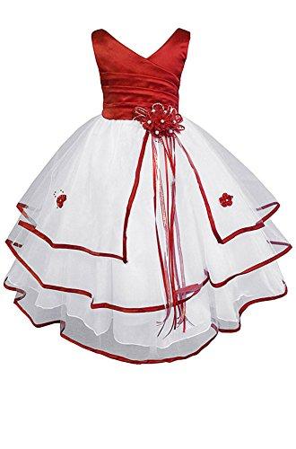 AMJ Dresses Inc Big-Girls Flower Girl Communion Pageant Wedding Easter Dress