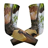 Arm Sleeves Squirrel Eat Cookie Man Baseball Long Cooling Sleeves Sun UV Compression Arm Covers