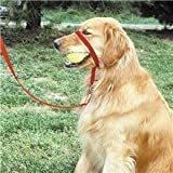 Gentle Leader Quick Release System, Extra Large, Red, My Pet Supplies