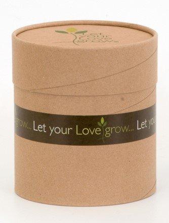 Amazon.com: Deje que su amor crecer – Un ambientalmente ...