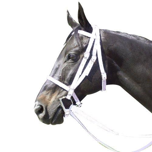 - Intrepid International Nylon Race Horse Bridle, White