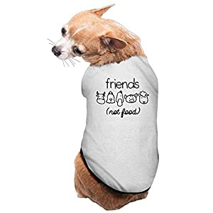 Vegan Friends Not Food Animal Lover Gray Cute Dog Coat S