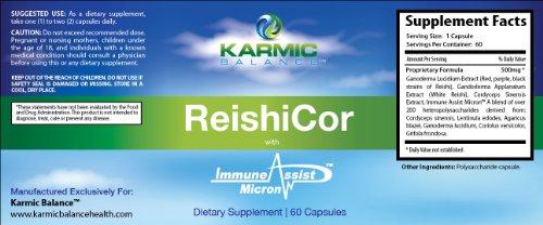 ReishiCor (2-Pack!) - Les leaders mondiaux Mélange de Reishi, Ganoderma, Cordyceps et la immunitaire brevetés Aider Micron! -Ce mélange étonnant est utilisé par les médecins dans le monde entier pour traiter tout de diabète au cancer du sein pour les mala