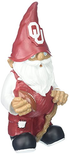 Oklahoma 2008 Team Gnome