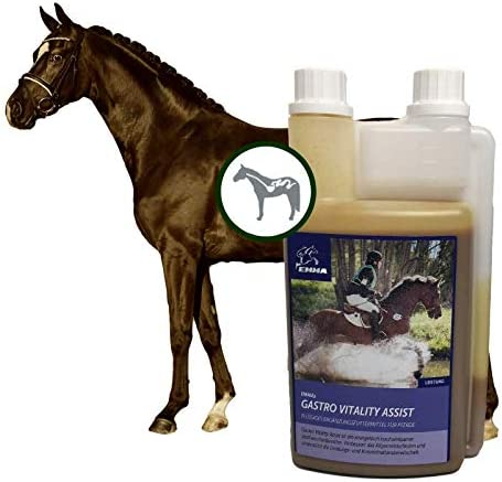 ♥ EMMA levadura de cerveza para caballos I líquidos para la flora intestinal y digestión, alimentación suplementaria para caballos con úlcera gástrica 1 litro