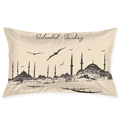 TysoOLDPhoneC Pillow Sham,Sketch of Retro Istanbul Skyline with Gulls by Bosphorus Ottoman Heritage,Decorative Standard Queen Size Printed Pillowcase 30 X 20 Inches,Pillow Cushion Cover