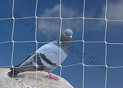 Henry Cowls Bird Netting For The Garden 5m X 5m 50mm 2 Anti Pigeon Knotted Mesh Heavy Duty White Net Protection Amazon Co Uk Kitchen Home