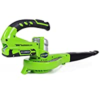 Greenworks Tools 2400007 24V Akku-Laubgebläse (ohne Akku und Lader)