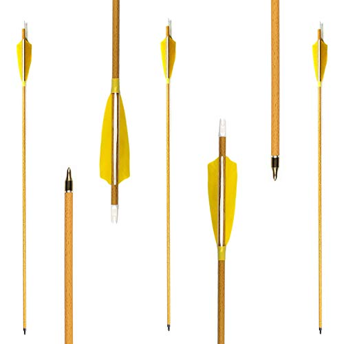 Letszhu Archery Carbon Arrows 500 Spine Real Feather Fletching with Changeable Field Points for Hunting Target Shooting (Pack of 6) (29 Inch Arrows)