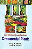 img - for Economically Important Ornamental Plants book / textbook / text book