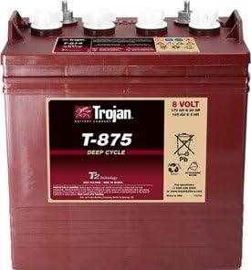 Batería tracción golf TROJAN T875