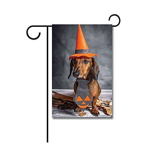 YQZsay Dachshund Dog Dressed Funny Halloween on Wooden Table Garden Flag 12.5 x 18]()