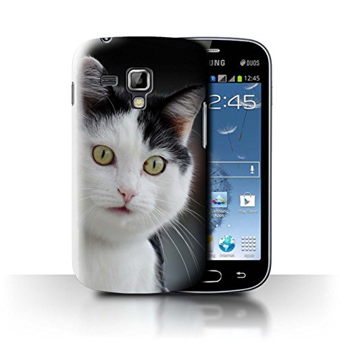 Phone Case for Samsung Galaxy S Duos 2/S7582 Funny Animal Meme Surprised Cat Design Transparent Clear Ultra Slim Thin Hard Back Cover
