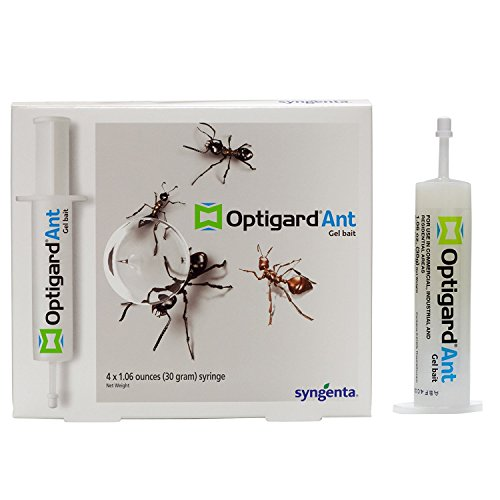 Optigard Ant Bait Gel-1 box (4x30 grams)