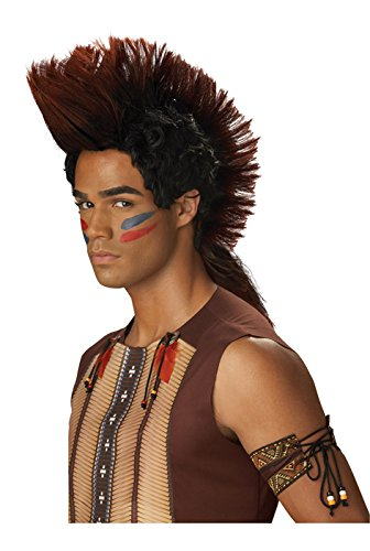 California Costumes Men's Indian Warrior Wig, Auburn/Black, One Size