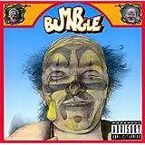 Mr. Bungle