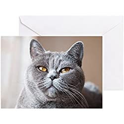 CafePress - Muzzle Of Gray British Cat - Greeting Card, Note Card, Birthday Card, Blank Inside Glossy