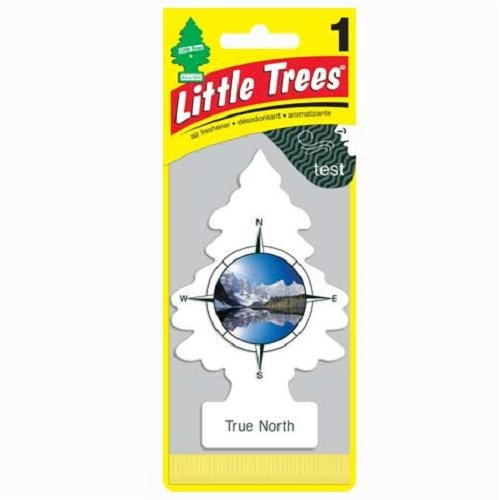 Little Trees Air Fresheners, True North (Pack of 12)