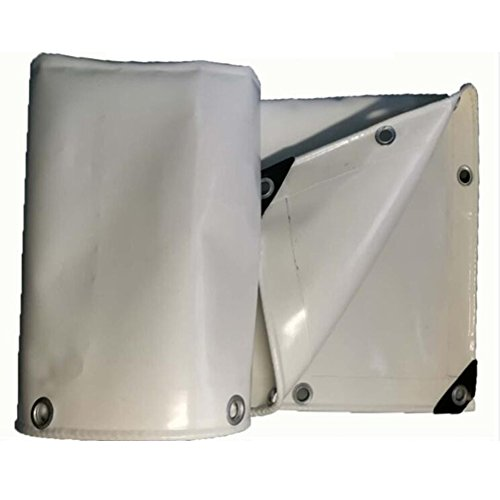 消毒する雇った菊ZEMIN オーニング サンシェード ターポリン 防水 日焼け止め テント シート ルーフ 防風 織り キャンバス ポリエステル、 グレー、 650G/4サイズあり (色 : グレー, サイズ さいず : 2X3M)