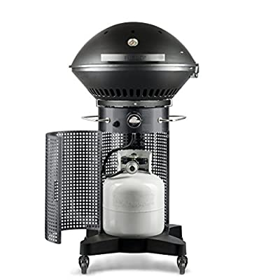 Fuego F24C Professional Propane Gas Grill
