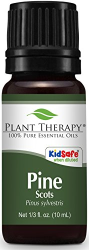 (Plant Therapy Pine Essential Oil. 100% Pure, Undiluted, Therapeutic Grade. 10 ml (1/3 oz).)