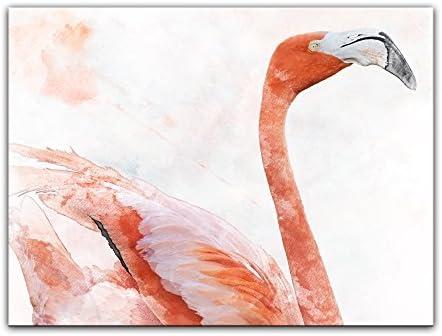 Bilderdepot24 Cuadros en Lienzo Lámina Reproducción Acuarela Flamenco 50 x 40 cm - Listo tensa, Directamente Desde el Fabricante: Amazon.es: Hogar