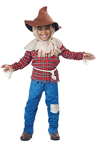 California Costumes Harvest Time Scarecrow/Toddler Costume, One Color, 42100