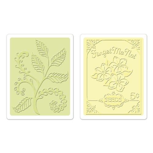 Sizzix Ferns und Seed, Packet Set von Jen Phil Textured Impressions Prägemappen, 2er Packung, Mehrfarbig