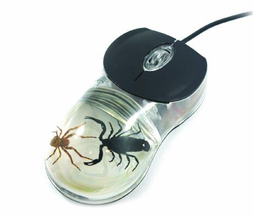 Clear Scorpion - 8