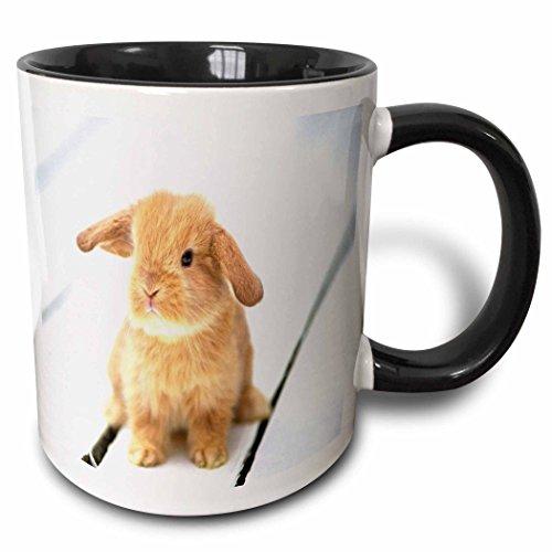 3dRose mug_55173_4