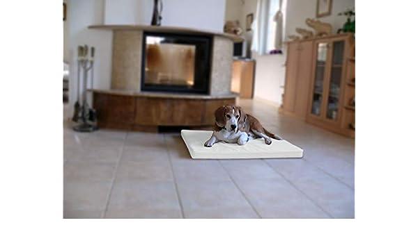 Omar - Ortho ortopédico hundematte piel sintética Perros cama colchón 70 x 90 cm color blanco: Amazon.es: Productos para mascotas