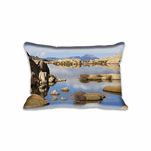 2 sides Printing Soft Decorative Home Pillow Protector 20