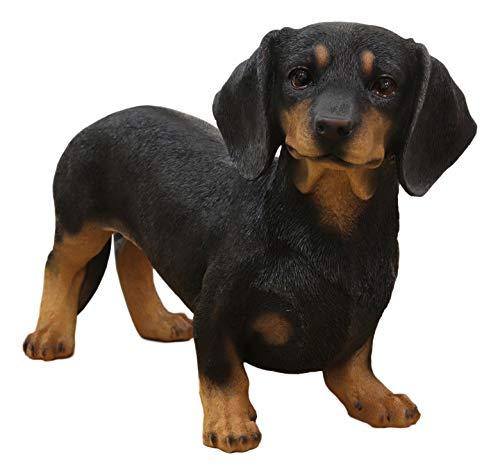 Ebros Adorable Large Lifelike Realistic Black and Tan Dachshund Dog Statue 19.5