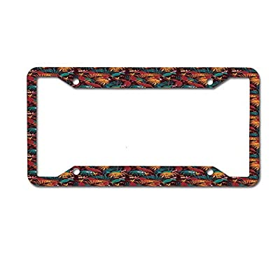 TysoOLDPhoneC License Plate Frame Aluminum Protector Car Tag Frame 4 Holes