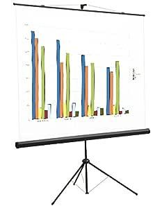 Provis - Pantalla proyector de 100 Pulgadas 180 x 180 cm: Amazon ...