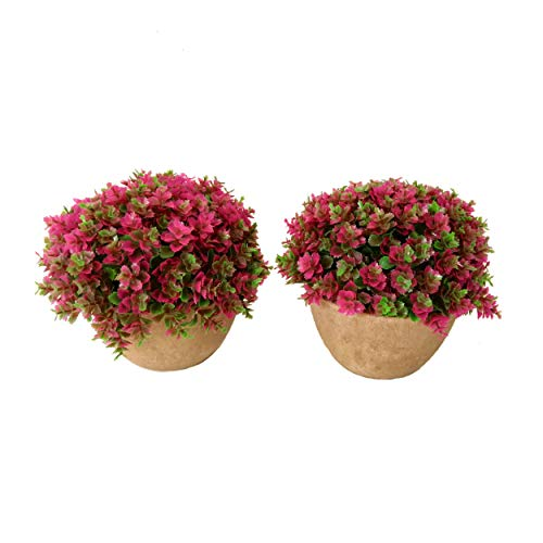 Maikai Products 2-pack Artificial Potted Pink Clover. 5   Tall x 5   Wide Mini Size. Minimalist. Long lasting. Decorative fake grass plant in pots for home office indoor bathroom kitchen table decor.