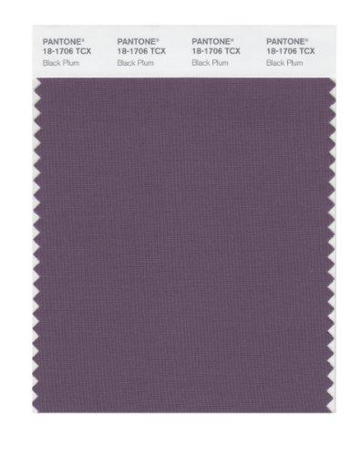 PANTONE SMART 18-1706X Color Swatch Card, Black Plum ()