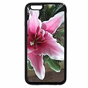 iPhone 6S Plus Case, iPhone 6 Plus Case, A day on the Acres 17