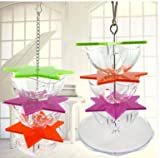 Bird Feeders Parrot Food Plate - Parrots Feeder Six-Pointed Star Toys Hanging Parrot Macaw African Greys Budgies Parakeet Cockatiel Conure Cage Toy