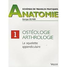 Schemas T.p. Osteologie F.1 Squelette Appendi.