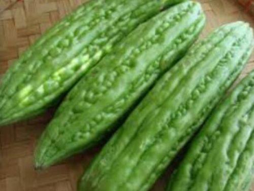 Ampalaya 20 Seeds Philippine Bureau of Plant Industry Bitter Melon Amargoso Seed