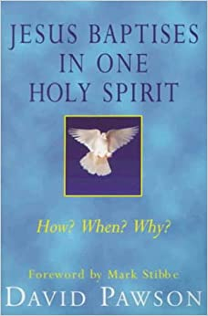 Book Jesus Baptises in One Holy Spirit: When?, How?, Why?, Who?
