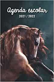 Agenda escolar 2021 2022: Planificador escolar diario | Septiembre de 2021 a Agosto de 2022 | 2 días por página | Ideal para colegio, colegio y bachillerato | Caballo pintado