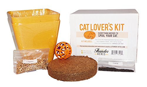 Cat Lover's Kit, Catgrass seed, Catnip seed, Coco Coir, with bonus Cat Toy (Orange)
