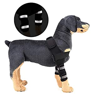 SELMAI Reflective Dog Shoulder Brace Front Leg Brace Canine Elbow Protector Extra Supportive Joint Wrap Arthritis Loss… Click on image for further info.