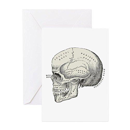 CafePress - Skull - Greeting Card, Note Card, Birthday Card, Blank Inside Glossy