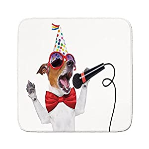 Cozy Seat Protector Pads Cushion Area Rug,Popstar Party,Jack Russel Dog with Sunglasses Party Hat and Bowtie Singing Birthday Song Decorative,Multicolor,Easy to Use on Any Surface